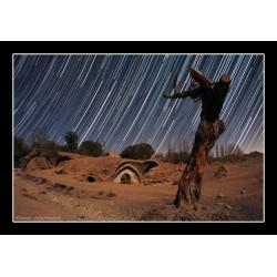 طلوع ستاره ها و درخت شکسته