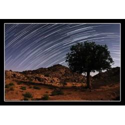طبیعت آسمان شب در لوچو